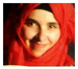 Hadeel Elhashlamoun ~ 18~
