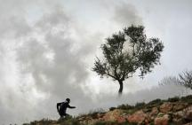 Palestinians stand tall and guard their ROOTS